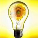 Энергосбережение и возобновляемые источники энергии